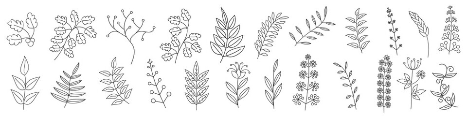 Tree branches collection. Vector outline icons. Fototapete