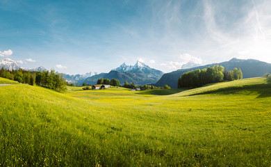 Photo sur Toile Bleu jean Idyllic mountain scenery in the Alps with lush blooming meadows in springtime