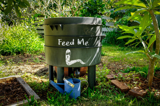 Worm farm compost bin in organic Australian garden with Feed Me worm sign, sustainable living and zero waste lifestyle