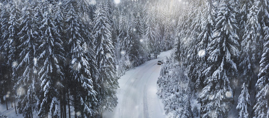 Travel concept. Car rides on a snowy forest road. Beautiful scenic winter landscape