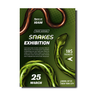 Tropical Snakes Exhibition Advertise Banner Vector. Wild Poisonous Snakes With Bright Color. Green And Brown Skin Endemic Vipers. Crawling Dangerous Venomous Reptile. Realistic 3d Illustration