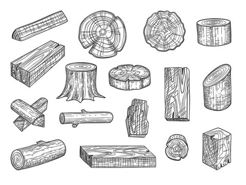 Lumber. Wooden trunks branch oak stacked log from tree vector hand drawn set. Lumber trunk wooden, hardwood oak, wood structure stump illustration