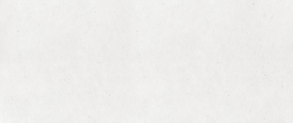 Old paper texture background. Banner
