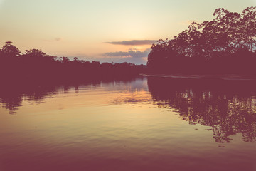 Amazon rainforest sunset during a boat trip with a reflection of the trees in the water. Puerto Francisco de Orellana. Ecuador. South America.