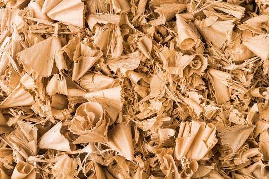 Beautiful spiral curled wooden sawdust in texture detail. Abstract close-up of wood shavings scattered on pile as decorative background. By-product of milling, routing or drilling. Woodworking waste.