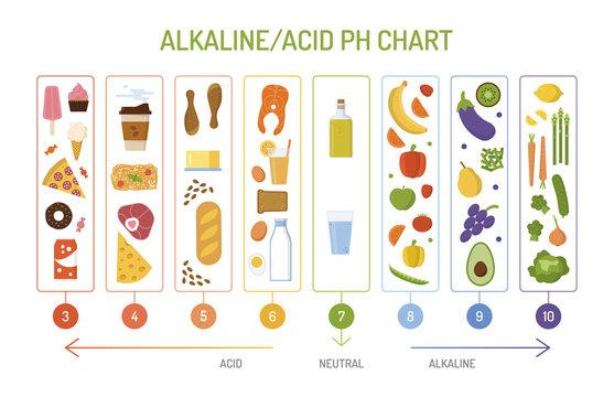 Ph balance chart. Alkaline acid diet concept. Flat style. Vector illustration.