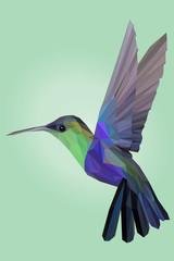 Beautiul Hummingbird Bird in Lowpoly Vector Illustration