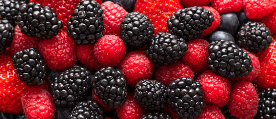 Berry background. Banner. Blackberries, raspberries and strawberries closeup, macro. Food background. Sweet fresh ripe berries mix.
