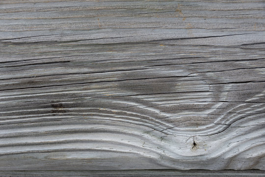 Background texture of grey weathered wood grain