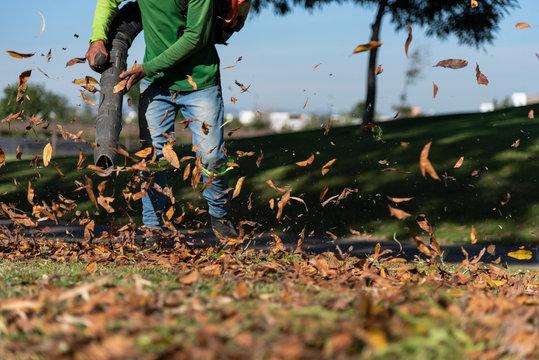 Leaf Blower Landscaper operating hoovering removes autumn leaves