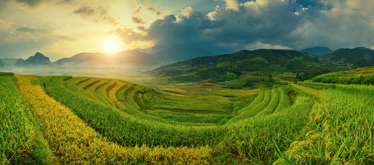 Wall Murals Rice fields Rice fields on terraced of Mu Cang Chai, YenBai, Vietnam. Vietnam landscapes.