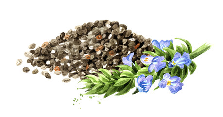 Pile of organic chia seeds with chia branch. Hand drawn watercolor illustration, isolated on white background