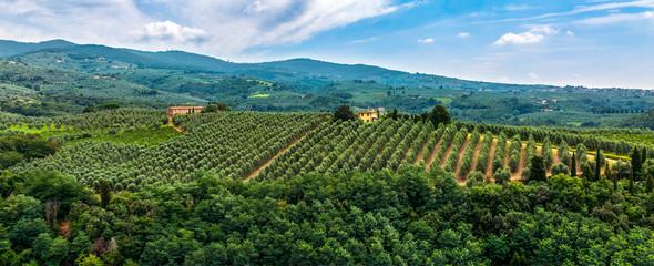 Fotorollo Blau Jeans Green Tuscany Landscape