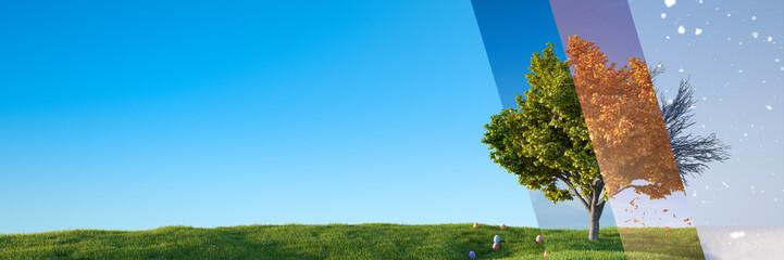 Fotorollo Pool Baum im Wandel der vier Jahreszeiten auf Wiese