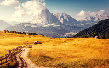 Fotomurales - road in mountains
