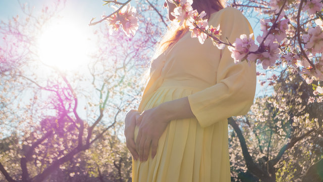 Beautiful pregnant woman maternity photoshoot in blooming early spring flowers with her hands in heart shape showing care and healthy lifestyle