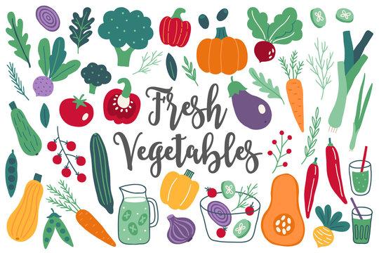 Set of fresh vegetables - onion, beet, radish, arugula, cherry tomato