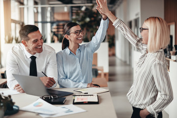 Laughing businesswomen high fiving together during an office mee