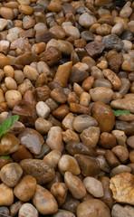 Rocks over ground