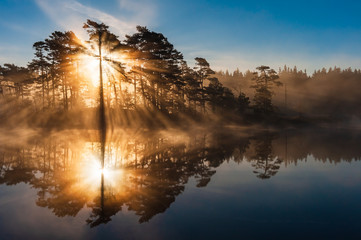 Photo sur Toile Marron chocolat Stunning sunrise through trees and reflected on still lake