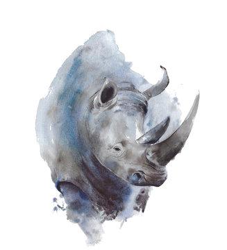 Rhinoceros portrait African wildlife endangered specie safari animal watercolor painting illustration isolated on white background