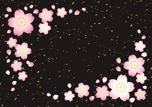 桜テクスチャ【和風黒】
