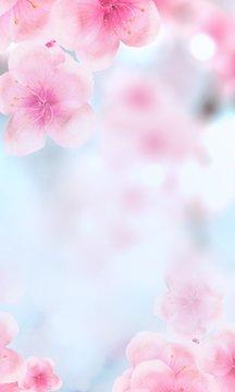 vertical Japanese Spring Sakura cherry blossoms 240x400 size website fat skyscraper banner background. 3D Illustration Clip-Art floral spring petal design header. copy space in pink, white, blue