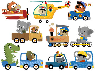 set of cute animals cartoon on vehicles