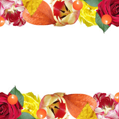 Fototapete - Beautiful floral pattern of roses, tulips and physalis. Isolated