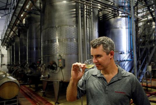 Wine maker Kobus van der Merwe samples a glass of Chenin Blanc, part of a series of Uncanny Wines canned wines, in Paarl