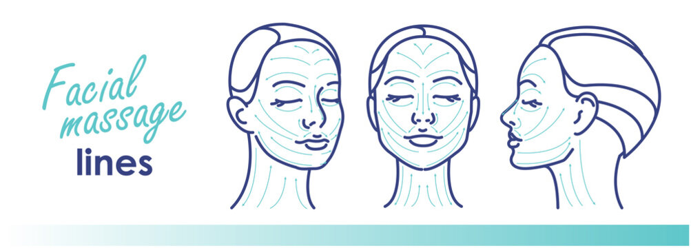 Massage facial lines. Vector illustration. Beauty treatment, skin care, massage lines.