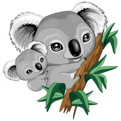 Tuinposter Draw Koala Baby and Mother on Eucalypt Branch Cute Characters Vector Illustration