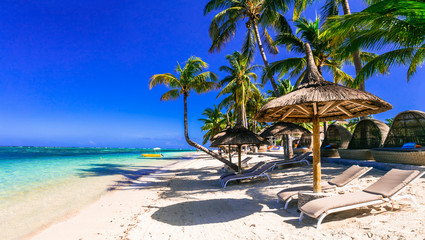 Fototapete - Relaxing tropical holidays. tranquil beach scenery with beach chairs and umbrellas under palm trees