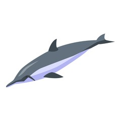 Aquatic dolphin icon. Isometric of aquatic dolphin vector icon for web design isolated on white background
