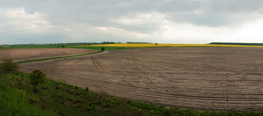 Wall Mural - Flowing fields of plowed field and cloudy sky in early spring