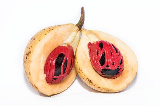 Fresh nutmeg isolated on white background