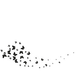 Papiers peints Papillons dans Grunge silhouette,beautiful butterflies, isolated on a white