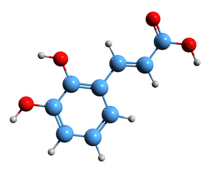 3D image of 2 3-dihydroxy cinnamic acid skeletal formula - molecular chemical structure of  hydroxycinnamic caffeic acid isolated on white background