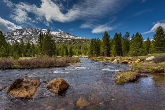 Dana Fork Tuolumne River, mountain river in the Sierra Nevada, California, USA.