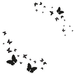 Photo sur Aluminium Papillons dans Grunge silhouette,beautiful butterflies, isolated on a white