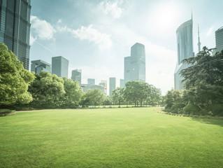 Foto auf Leinwand Shanghai Green Space, Lujiazui Central, Shanghai, China
