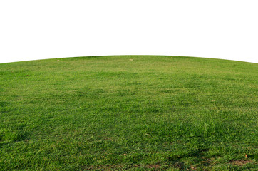 Papiers peints Herbe Green grass field isolated on white background with clipping path,Green grass meadow field from outdoor park isolated in white background