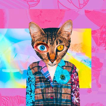 Contemporary art collage. Retro Cat magazine clipping