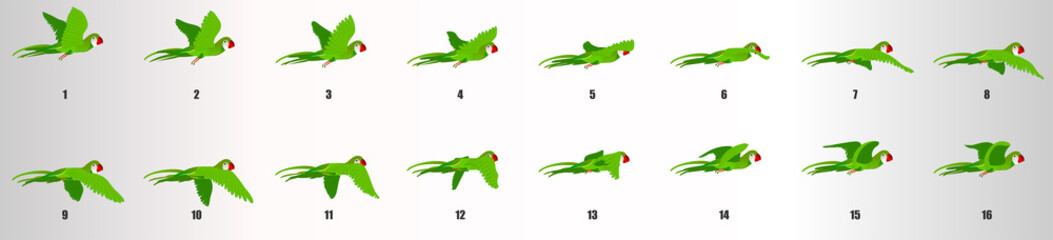 Parrot flying animation sequence, loop animation sprite sheet  Fototapete