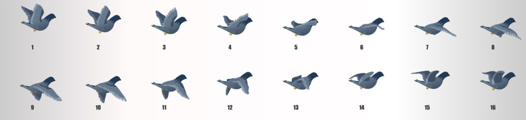 Pigeon flying animation sequence, loop animation sprite sheet  Fotomurales
