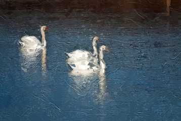 Fototapete - Impressionistic Style Artwork of Three White Swans Swimming in the Blue Water