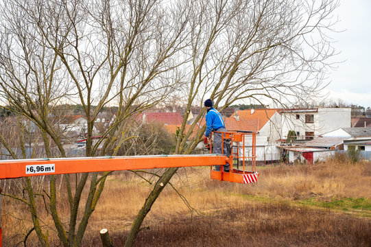 Man on aerial platform pruning branches of tree with chainsaw
