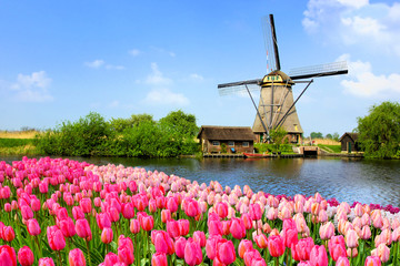 Traditional Dutch windmill along a canal with pink tulip flowers in the foreground, Netherlands