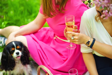 Foto auf Leinwand Rosa girls on a picnic in a blooming Sunny garden with a dog drink champagne