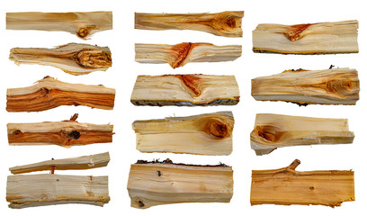 Split birch logs firewood each log is isolated on a white background